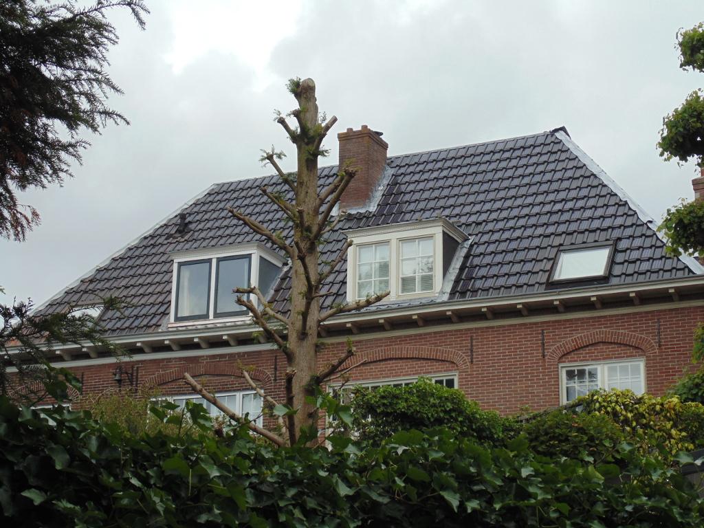 woning Haarlem met zonnepannen